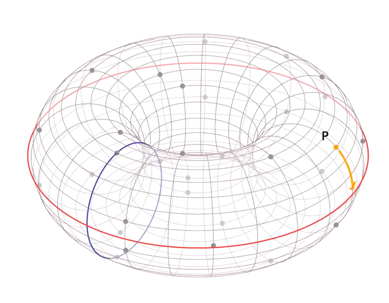 Elliptic Curve on finite field in 3D space a donut shape, from Trustica